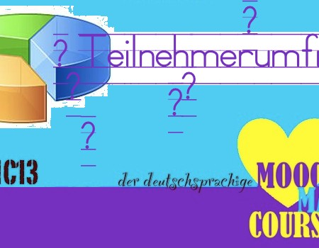 MMC13_Teilnehmerumfrage
